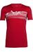 Icebreaker Tech Lite t-shirt rood